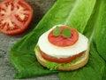 Free Mozzarella Cheese And Tomato Stock Photography - 18572952