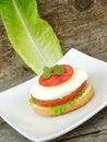 Free Mozzarella Cheese And Tomato Stock Photography - 18573122