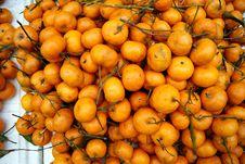 Free Orange Stock Photos - 18572233