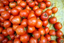 Free Tomatoes Stock Image - 18572321