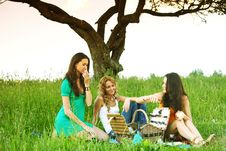 Free Girlfriends On Picnic Royalty Free Stock Images - 18577159