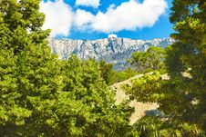 Crimean Mountains Wood And The Beautiful Nature Royalty Free Stock Images