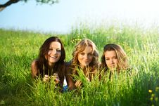 Free Girlfriends Under Tree Royalty Free Stock Images - 18577549