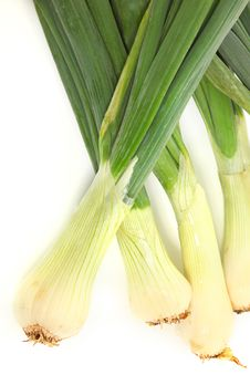 Free Large Spring Onions Royalty Free Stock Photography - 18578907