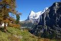 Free Autumn In Switzerland Royalty Free Stock Photo - 18581585