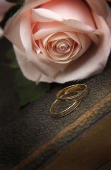 Wedding Rings On Bible Stock Photography