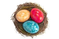 Free Easter Egg In Nest Royalty Free Stock Image - 18584156