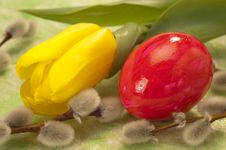 Free Easter Egg And Tulip Royalty Free Stock Image - 18584226