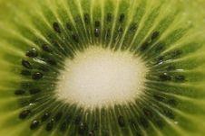 Free Fresh Kiwi Stock Image - 18584501