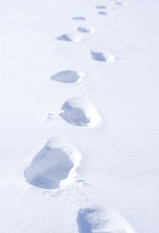Free Footstep On Snow Royalty Free Stock Photos - 18584528