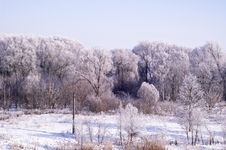 Free Winter Landscape Royalty Free Stock Image - 18588166