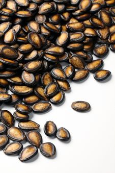 Free Black Melon Seeds Royalty Free Stock Images - 18588399