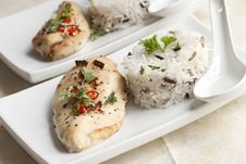 Free Chicken With Rice Royalty Free Stock Photo - 18588765