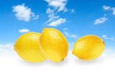Free Three Yellow Lemons Stock Photos - 18588883
