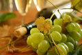 Free Fresh Grapes, Vine And Vine Bottle Stock Image - 18596661