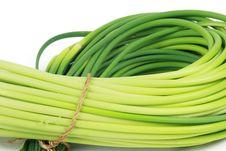 Free Garlic Stock Photo - 18590110