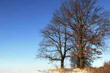 Free Winter Landscape Stock Photos - 18590333
