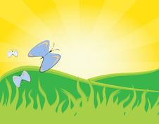 Free Spring Butterflys Royalty Free Stock Photos - 18596198