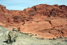Free Desert Scene Royalty Free Stock Image - 1860676