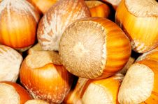 Free Hazel Nuts. Stock Photography - 1861002