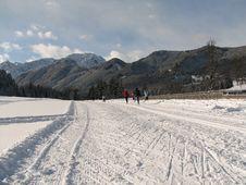 Free Cross-country Ski Run Royalty Free Stock Photo - 1861855