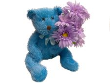 Free Furry Blue Teddy Bear Holding Flowers Royalty Free Stock Image - 1864926