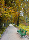 Free Green Bench Stock Photo - 18603110