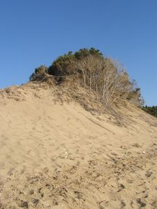 Free Sand Dune Stock Photography - 18600492