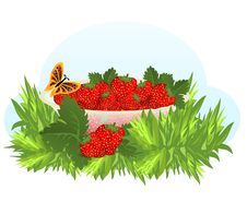 Free Bowl With Strawberries, Cdr Vector Stock Photography - 18600742
