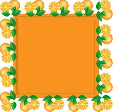 Free Frame Of Oranges Royalty Free Stock Photography - 18605387