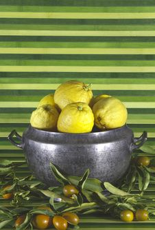Free Old Tureen With Lemons,mandarins,green Background Royalty Free Stock Image - 18606116
