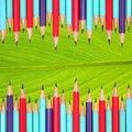 Free Pencils Frame On Leaf Stock Image - 18610621