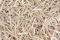 Free Dried Bamboo Leaves Royalty Free Stock Images - 18612989