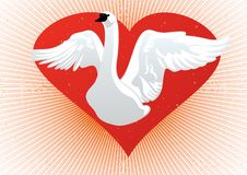 Free White Swan On The Background Of The Heart Stock Photo - 18611380