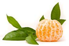 Juicy Tangerine Royalty Free Stock Image