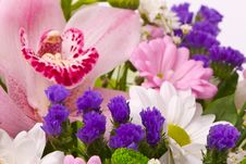 Free Magnificent Bouquet Royalty Free Stock Photos - 18612658
