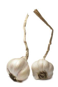 Free Garlic Stock Photo - 18613090