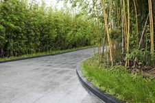 Free Bamboo Forest Stock Images - 18615604