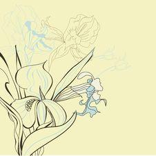 Free Iris Flowers Stock Images - 18616234