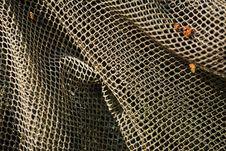Free Fishnet Closeup Stock Images - 18617474