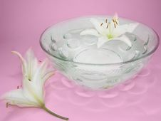 Spa Water With Lily Flower Petals