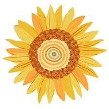 Free Sunflower Royalty Free Stock Image - 18622336