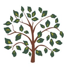 Green Leaf Tree Royalty Free Stock Image