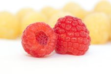 Free Red Raspberry Stock Photo - 18624550
