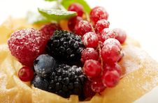 Free Berry Stock Photography - 18625312