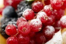 Free Berry Stock Image - 18625351