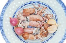 Free Serving Of Cooked Squids Royalty Free Stock Photos - 18625358