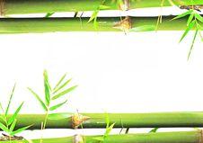 Free Bamboo Royalty Free Stock Photo - 18627625