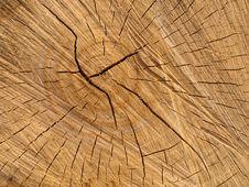 Free Wood Royalty Free Stock Image - 18628326