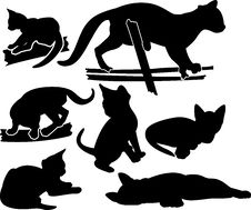 Free Set Of Kittens Silhouettes Stock Image - 18628511